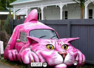 Modified cat car!