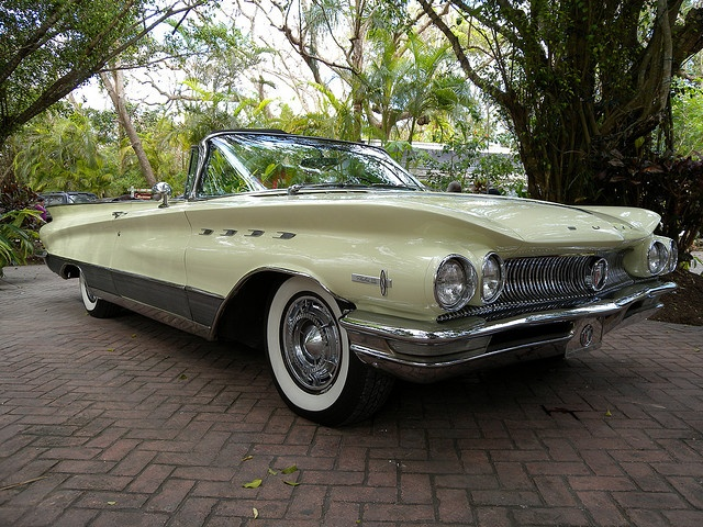 Buick Electra 225 ( We had a blue one) beautiful car 11